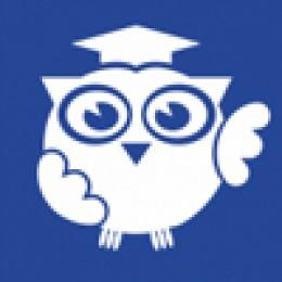 Институт педагогики